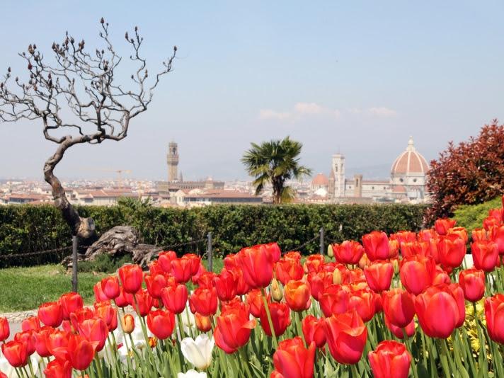 Сады и ароматы Флоренции