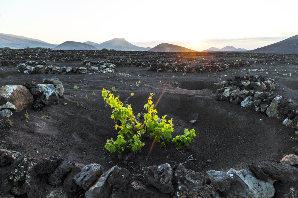 Лансароте,Канарские острова